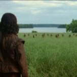 Review: El nuevo mundo (2005)